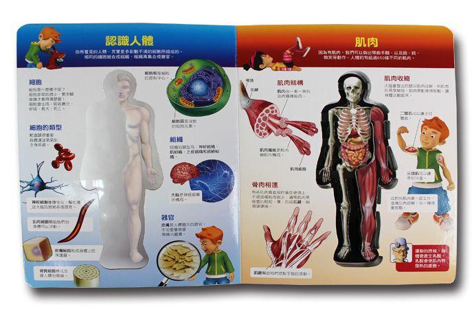 人體知識百科