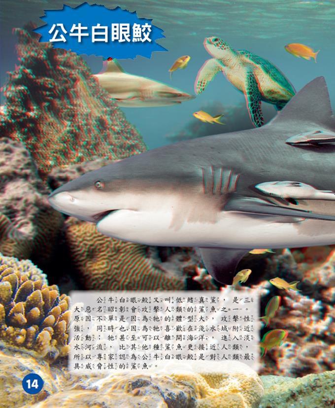 海底探奇‧鯊魚突襲
