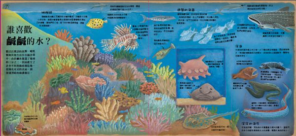 動物求生大挑戰-HOW酷立體科學大百科P2