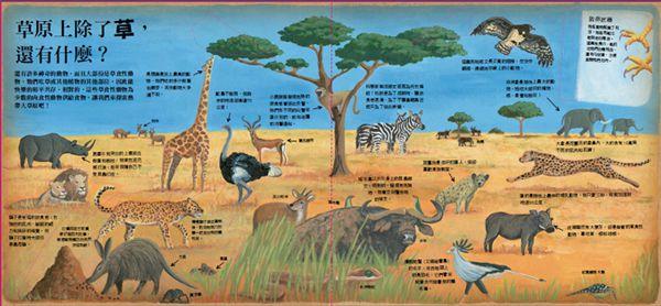 動物求生大挑戰-HOW酷立體科學大百科P3