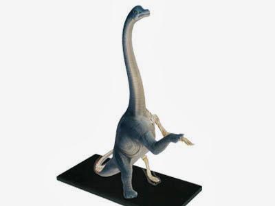 腕龍解剖模型(26094)
