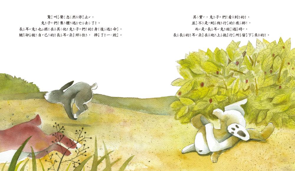 【品格教育繪本:自信自愛/激發潛力】長耳兔
